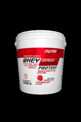 NUTRI8 Whey Protein Eper 4500g